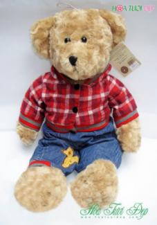 Gấu Bông Đẹp & Rẻ - Quà tặng hoàn hảo GB008