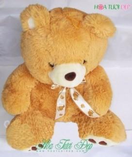 Gấu Bông Đẹp Rẻ, Xinh Xắn - GB023