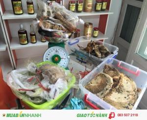 Cung cấp sáp ong, mật ong rừng U Minh