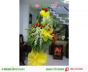 Hoa Tươi Chúc Mừng Khai Trương - KT046