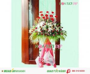 Kệ Hoa Mừng Khai Trương -  Hoa Đồng Tiền - KT027
