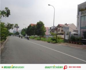 Chính chủ cần bán gấp 500m2 đất Bình Chánh MẶT TIỀN đường Phong Phú GIÁ HẤP DẪN