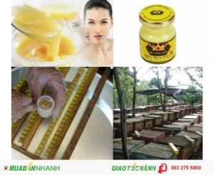 Làm đẹp thần kỳ - Sữa ong chúa tươi nguyên chất