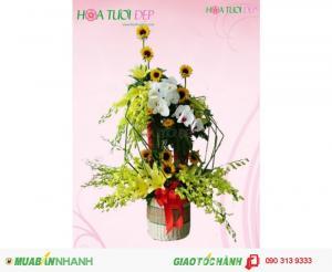 Giỏ Hoa Tươi Ban Mai Hồ Điệp - GSN018