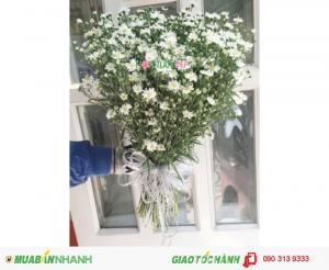 Bó Hoa Thạch Thảo - Hoa Chúc Mừng CM131