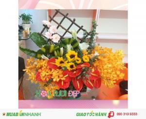 Hoa Chúc Mừng Đẹp Lung Linh - CM115