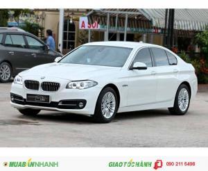 BMW 5 Series 520i LCI 2013
