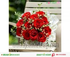 Bó 20 Bông Hoa Hồng Đỏ - CM016