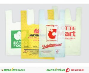 In túi xốp hai quai ,túi siêu thị bằng công nghệ in ống đồng chất lượng .