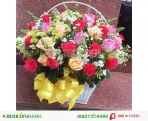 Lẵng Hoa Chúc Mừng Đẹp Lung Linh - CM128