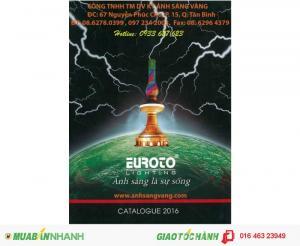 Euroto, NamLong-Netviet, Khaphaco, Tân Cường Thạnh, Sano, Quốc Ngọc, 168 Lighting, Kim Long, Hufa, Anfaco, Duhal, Paragon...