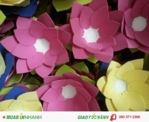 Hoa sen mút (thả hoa đăng)