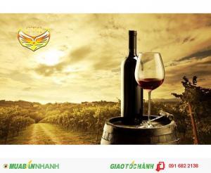 Rượu nho Phan Thiết