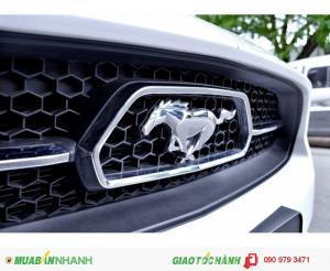 Ford Mustang GT Premium 2015 phiên bản kỷ niệm 50 năm hiếm ở Việt Nam