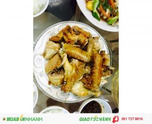 Cung cấp gà mái dầu Tây Ninh - chất lượng tuyệt vời