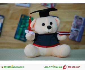 Gấu tốt nghiệp 20cm màu kem