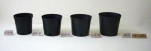 Công ty THAKICO - Chậu kiểng đen đỏ đủ size trồng cây chất lượng ,giá rẻ