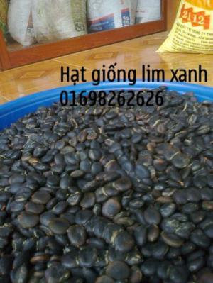 hạt lim xanh giá rẻ