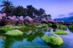 Khám Phá Đảo Bình Hưng - Hang Rái - Ninh Chữ - Vườn Nho