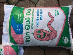 Phân trùng quế đỏ phục vụ trồng rau sạch tại nhà