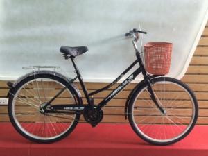 Xe đạp mini Meisijie