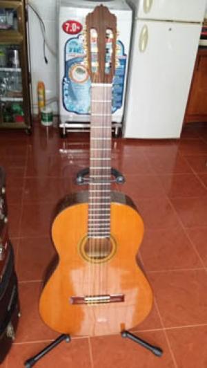 Guitar Jose Antonio 6C Tây Ban Nha có 2 cây