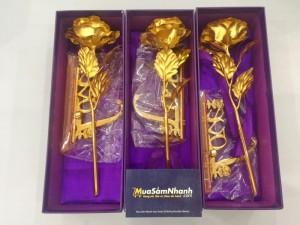 Quà tặng 20/10 vô cùng ý nghĩa - Hoa Hồng 3D Mạ Vàng LOVE - MSN383087