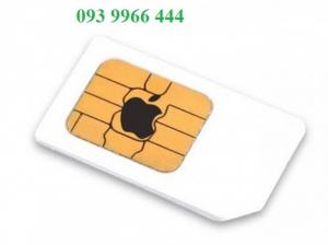 Bán sim mpbiphone 093 9966 444