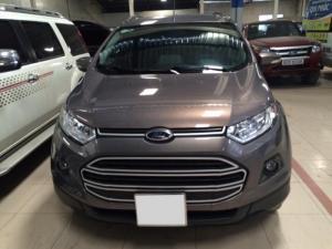 Ford Ecosport Trend AT 2014, màu Nâu, xe quá chất