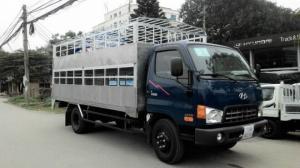 HD99 chở gia súc