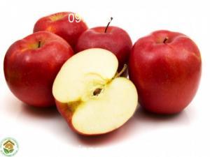 giống táo tây