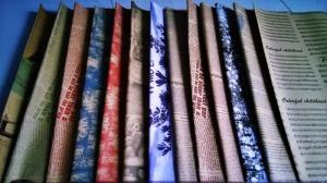 Cung cấp các loại giấy như giấy dầu, giấy gói hoa, giấy gói quà, giấy vintage, giấy nhún, giấy màu, giấy cuộn....