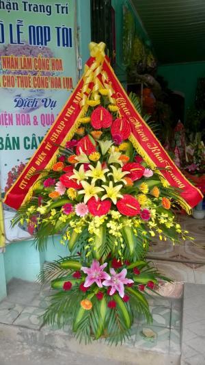 Công ty điện hoa Thanh Hóa  Địa chỉ: 177 Lê Lai - Phường Đông Sơn –Thành phố Thanh Hóa.