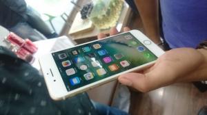 OEM 7 Plus Đài Loan