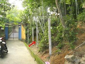 Tôi là Hằng đang cần tiền bán gấp đất thổ cư 360m2 ghần TT Quận Kiến An