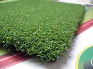 Chuyên cung cấp cỏ nhân tạo