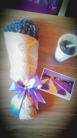 Hoa oải hương chuẩn Pháp tại Hà Nội