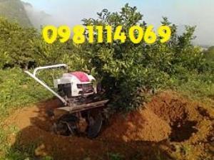 Máy làm đất đa năng 1wg4 nhà nông nên biết