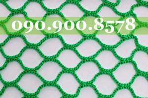 Lưới cứu sinh Hàn Quốc
