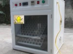 MÁY ẤP TRỨNG GÀ 170 TRỨNG Giá : 3.500.000 VNĐ máy ấp trứng gà mini 170 trứng mã số MB170 sản xuất theo công nghệ Hàn Quốc, tự động đảo trứng, tỷ lệ nở cao, dễ sử dụng, thân thiện với bà con