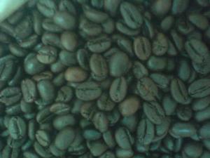 Chuyển giao công nghệ sản xuất cà phê