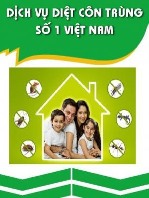 Dịch vụ diệt mối, muỗi, kiến, gián, chuột tại TPHCM