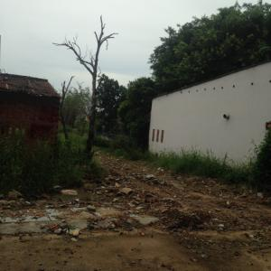 Cần bán lô đất thổ cư 100% đường Thạnh Lộc gần UBND P Thạnh Lộc