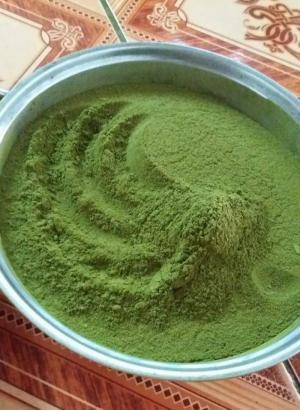 Bán sỉ, lẻ bột trà xanh nguyên chất