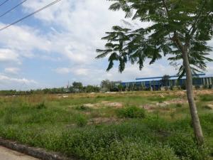 Đất KCN tây Bắc củ Chi 100m2 giá chỉ 264 triệu cơ hội đầu tư cực sốc