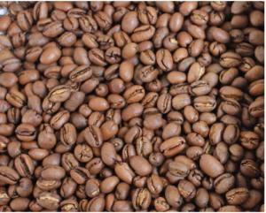 Cà phê culi đặc biệt có 36 mùi vị khác nhau