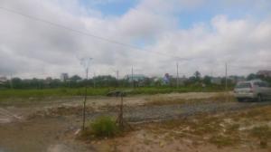Đất Mặt tiền Lý Thái Tổ Cát Lái đầu tư giá 698 - 989tr