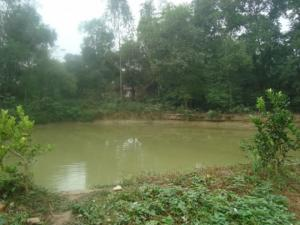 Bán đất vườn cây ăn trái 40.000m2 gần KDL rừng MaDaGuôi giá 4.7 tỷ thương lượng