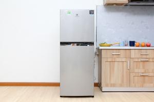 Tủ lạnh Electrolux ETB2100MG - (210 lít)