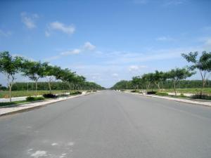 Bán đất nền tại Long Thành ngay trung tâm xã Phước Thái XDTD có sổ hồng từng nền